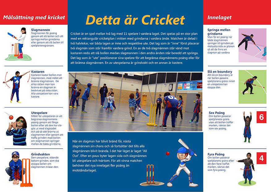 Vad är Cricket?